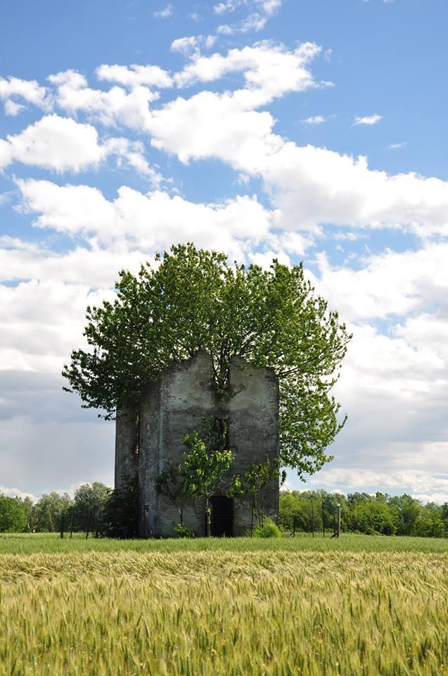 Pro Loco Sissa - Casa Pavesi Ghiaie di Borgonovo (foto di G. Chezzi)
