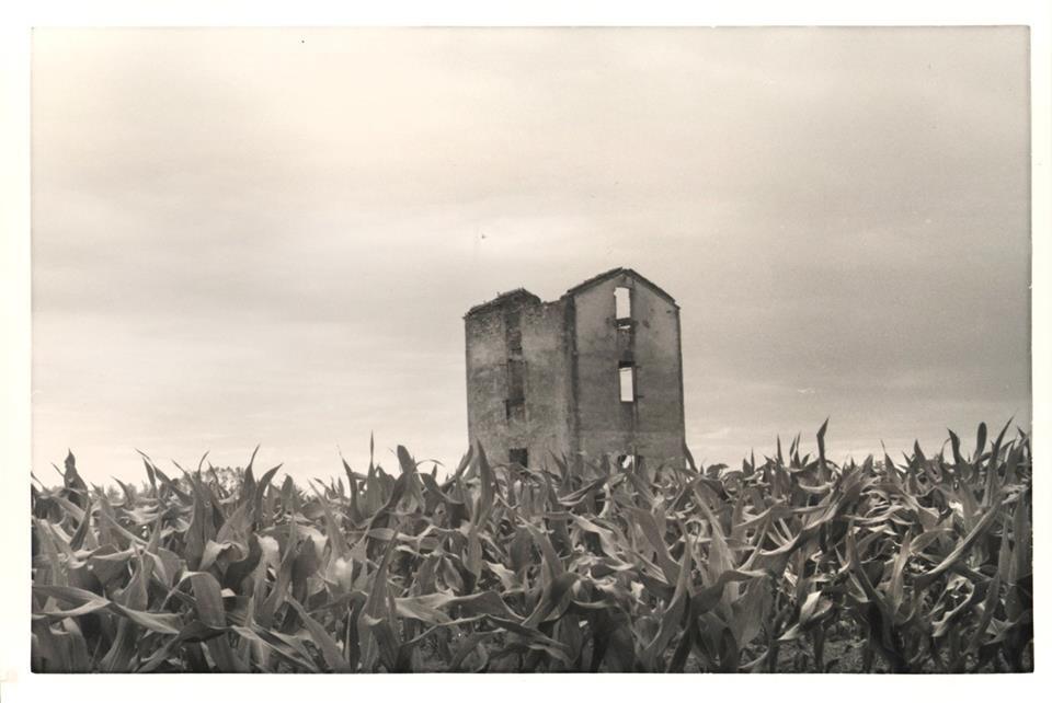 Pro Loco Sissa - Casa Pavesi Ghiaie di Borgonovo (foto di Andrea Barozzi)