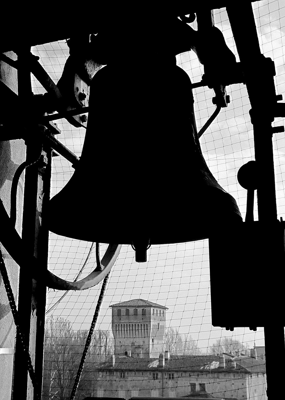 Prolocosissa- campane foto F.Sassi