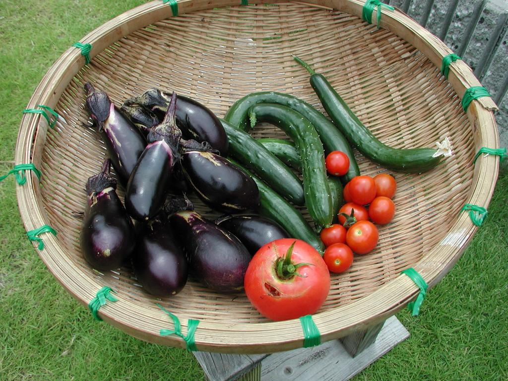 野菜は自家製