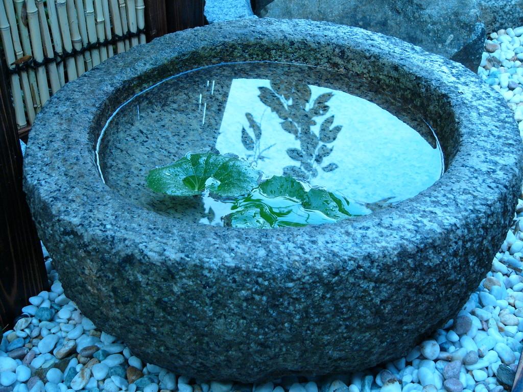 裏庭の水鉢(村野)