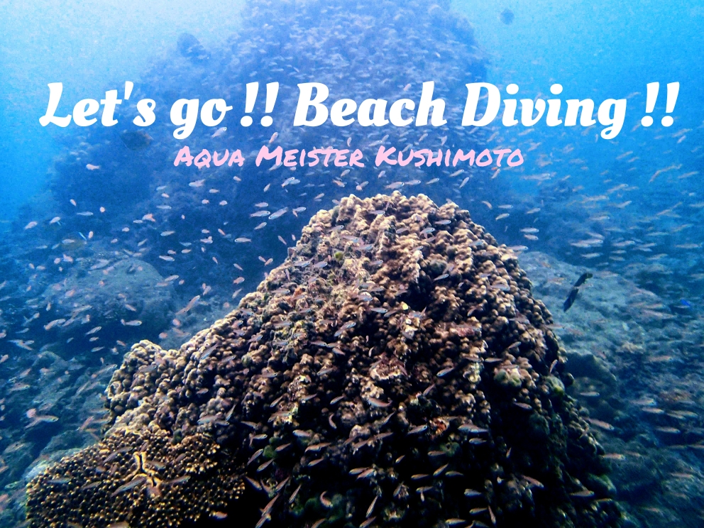 Beach Diving Festa.