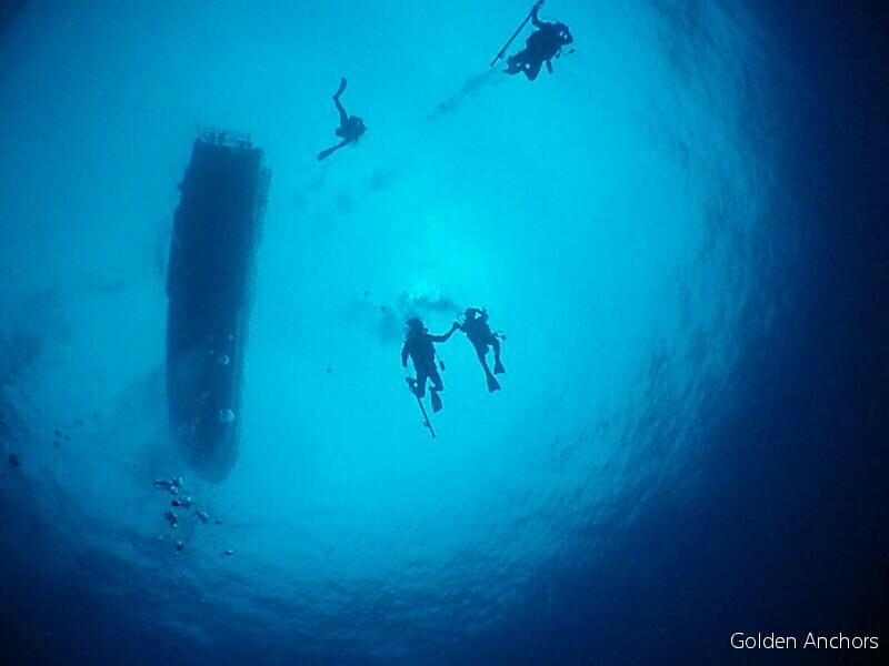 GOLDEN  ANCHORS 石垣島ドリフトダイビング