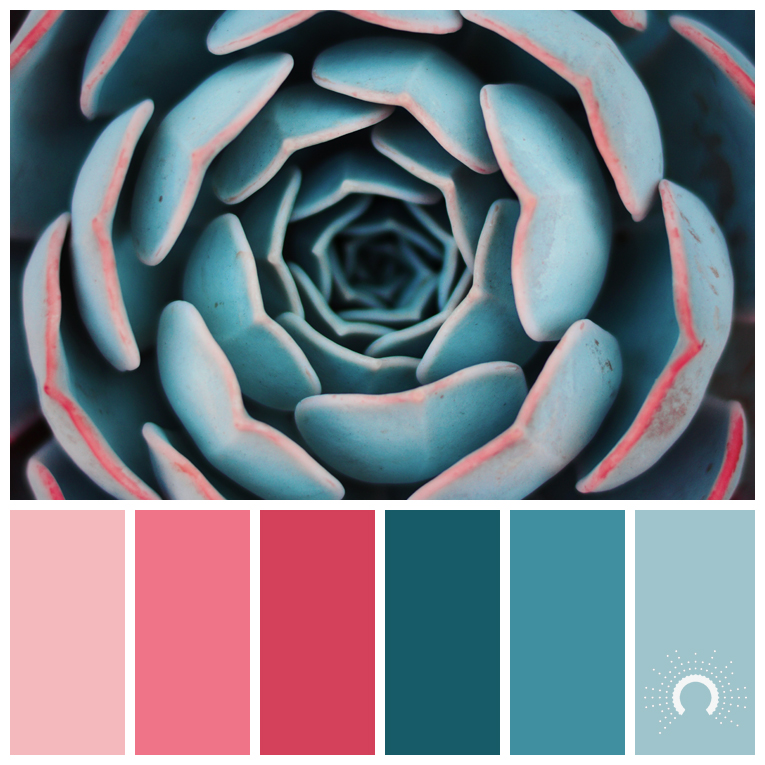 color palette, color combination, color combo, Farbpalette, hue, blue-green, rose, rot, blaugrün, rosa, red