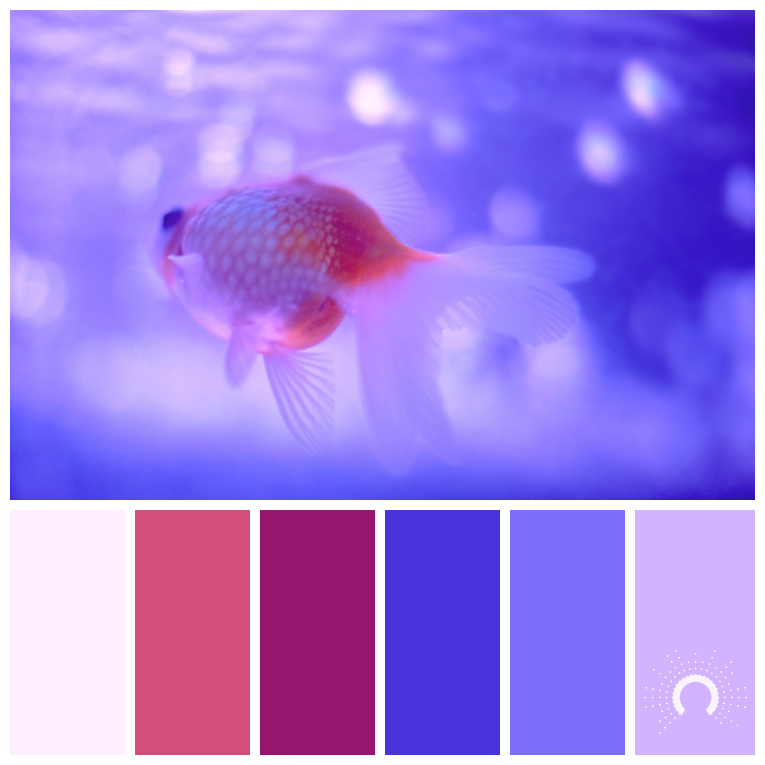 color palette, color combination, Farbpalette, hue, red tint, red-violet, purple, blue-violet, lila, blau, pink, rosa, blauviolet