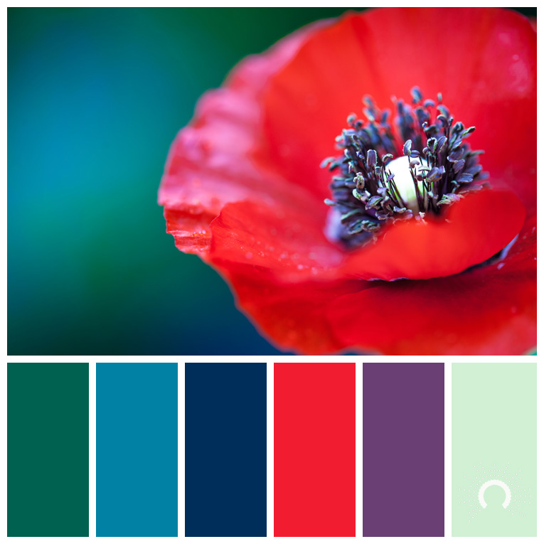 color palette, color combination, Farbpalette, hue, blue-green, blue, red, red-violet, green, grün, lila, rot, blau, blaugrün