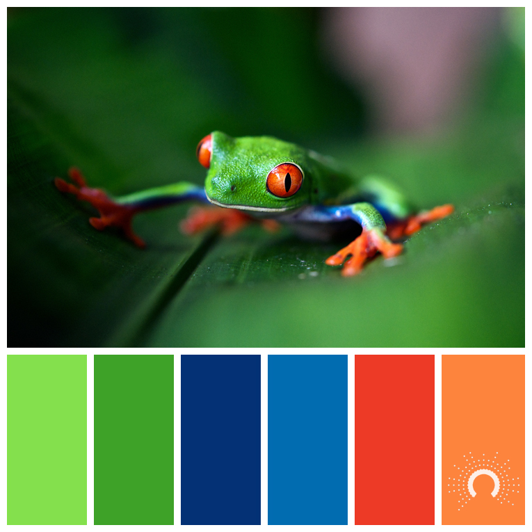 color palette, color combination, color combo, Farbpalette, hue, blue, green, red, orange, blau, grün, rot