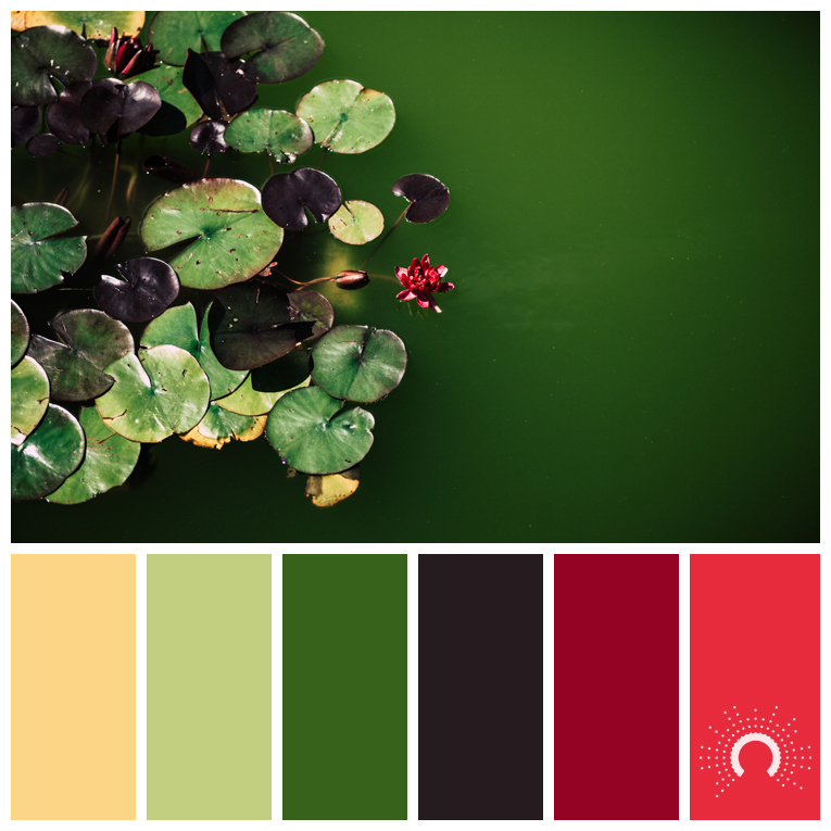 color palette, color combination, color combo, Farbpalette, hue, yellow, yellow-green, green, violet, redviolet, red