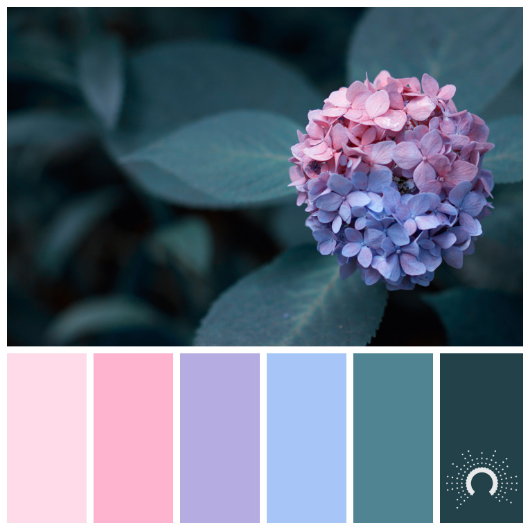 color palette, color combination, Farbpalette, hue, red, violet, blue, green, blue-green, red tint, rosa, lila, blau, grünblau, grün
