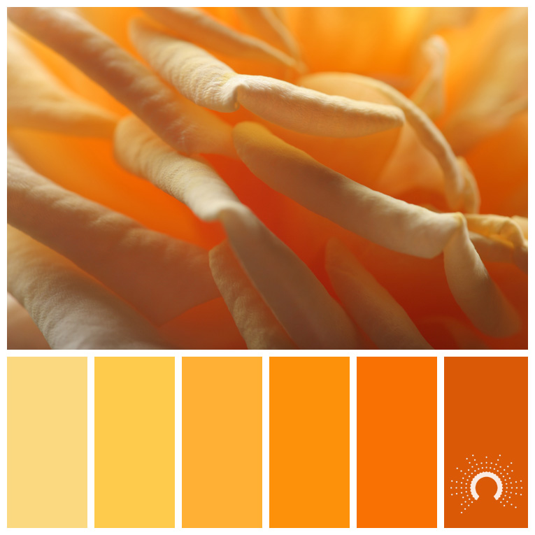 color palette, color combination, Farbpalette, hue, yellow, gelb, yellow-orange, gelb-orange, orange