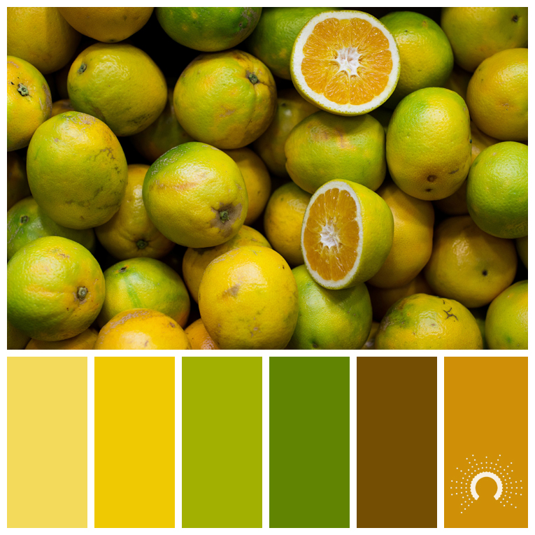 color palette, color combination, Farbpalette, fruit, Frucht, orange, Orangen