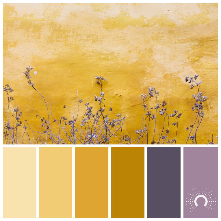 color palette, color combination, Farbpalette, hue, yellow, gelb, braun, brown, purple, lila, violet, complementary, komplementär