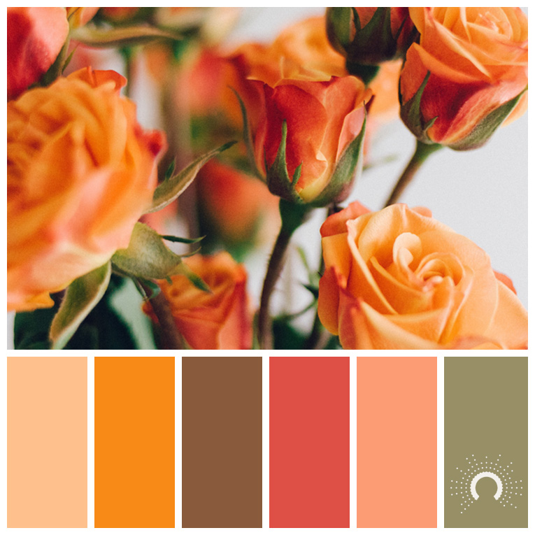 color palette, color combination, Farbpalette, hue, orange, brown, red, green, grün, rot, braun