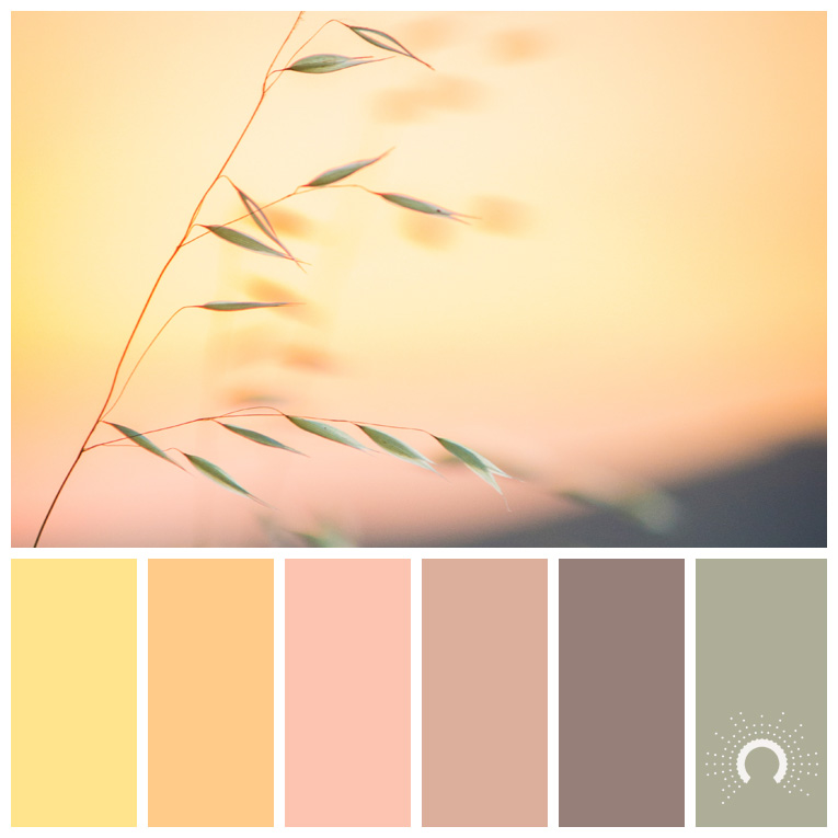 color palette, color combination, Farbpalette, hue, yellow, gelb, yellow-orange, gelb-orange, orange, braun, brown, pink, taupe, grün, green, rose