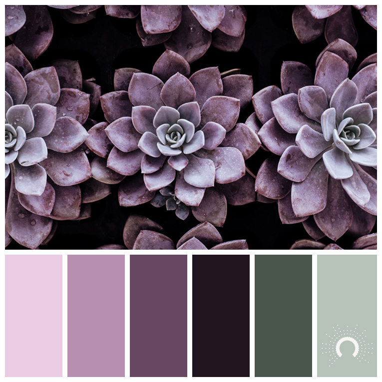 color palette, color combination, Farbpalette, hue, red-violet, green, rotviolet, grüne