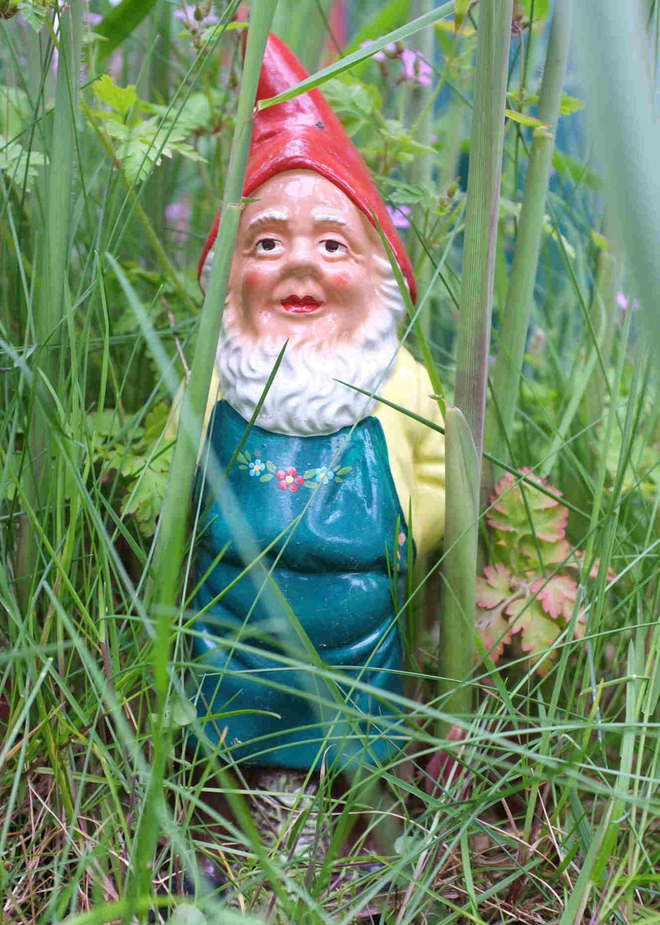 Wer versteckt sich da im Garten?