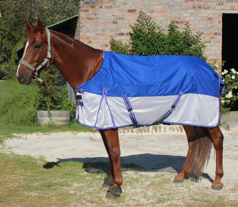 Horse Rugs World Of Horses