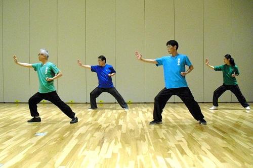長拳の基本技法である「順歩推掌」の写真です。