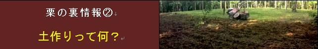 【松尾栗園】栗の裏情報② 土作りって何?