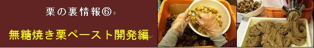【松尾栗園】栗の裏情報⑥ 無糖焼き栗ペースト開発編