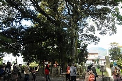 東首塚。もとは円墳でこの周囲6000坪に遺骨が埋められた。