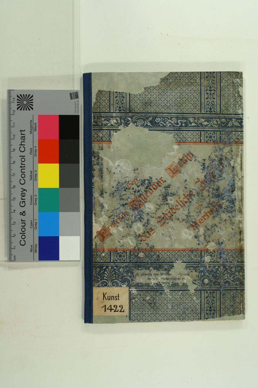 Buchrestaurierung: Fehlstellen im Bezug ergänzt