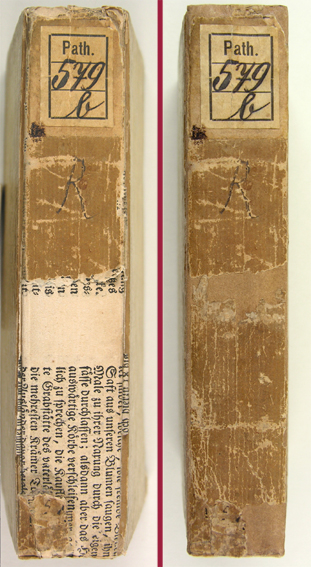 Buchrestaurierung: Papierband. Rücken ergänzt