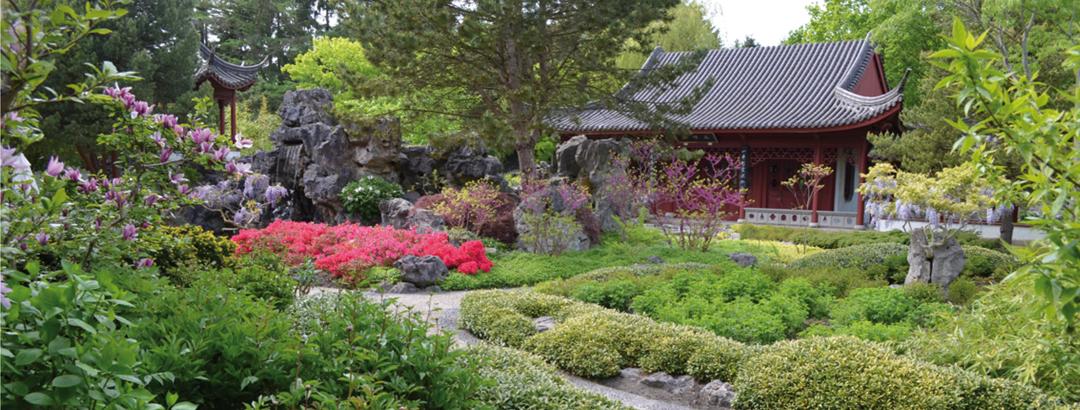 De Hortus botanicus in Haren
