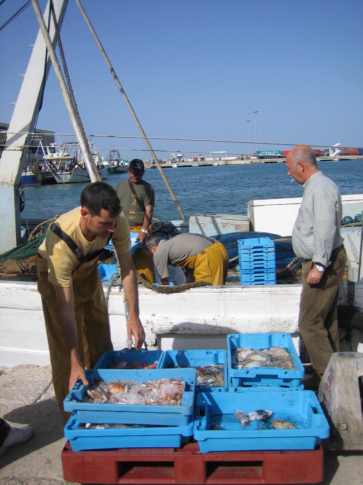 Om 17 uur komen de vissers aan in de haven van Denia