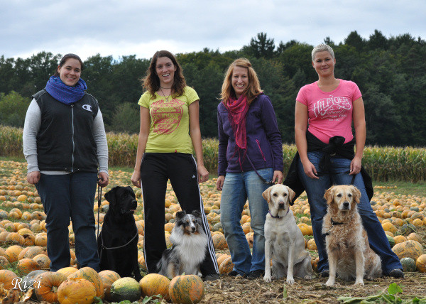 Therapy dog teams after the exam, thanks Verena Riegler-Ziegler for the photo