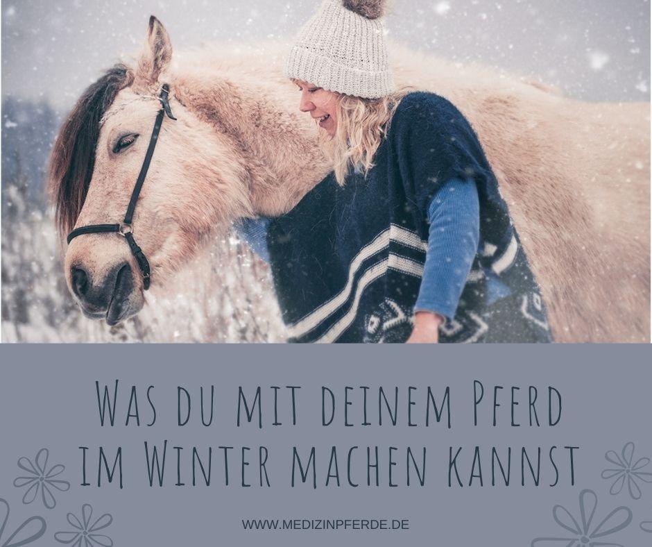 4 Dinge, die du im Winter mit deinem Pferd machen kannst