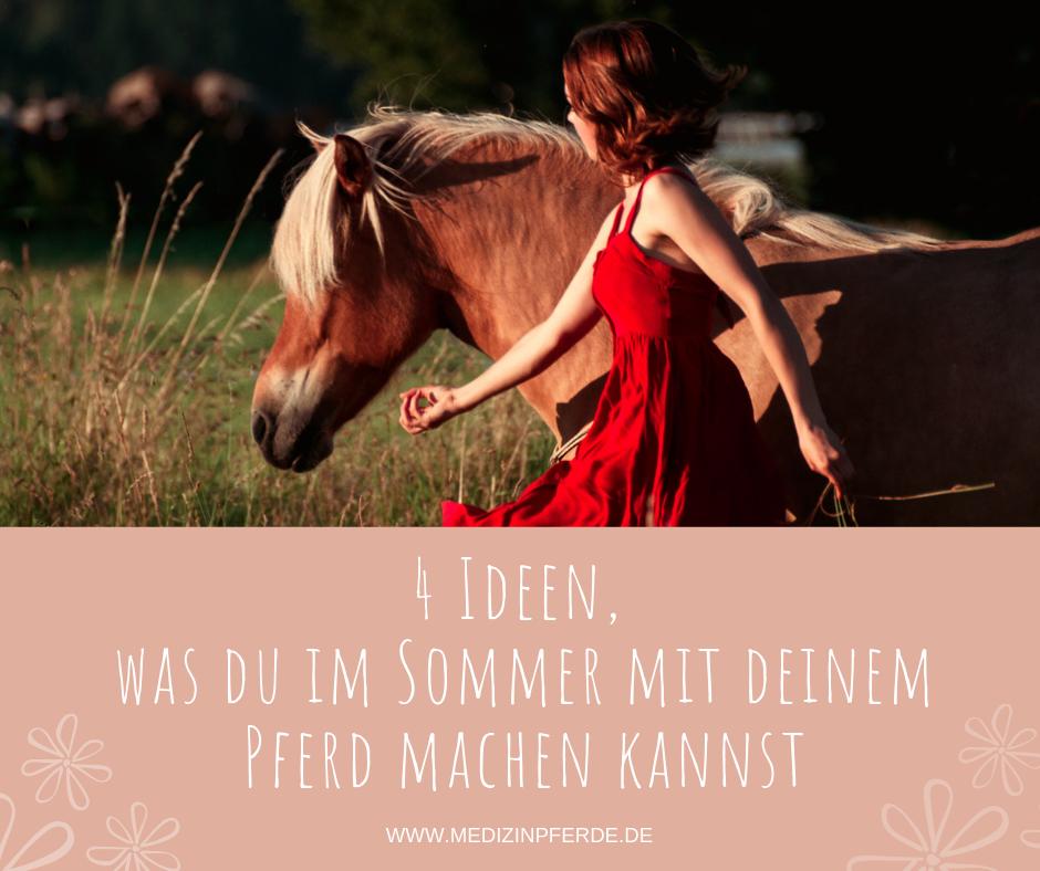 4 Ideen, was du im Sommer mit deinem Pferd machen kannst