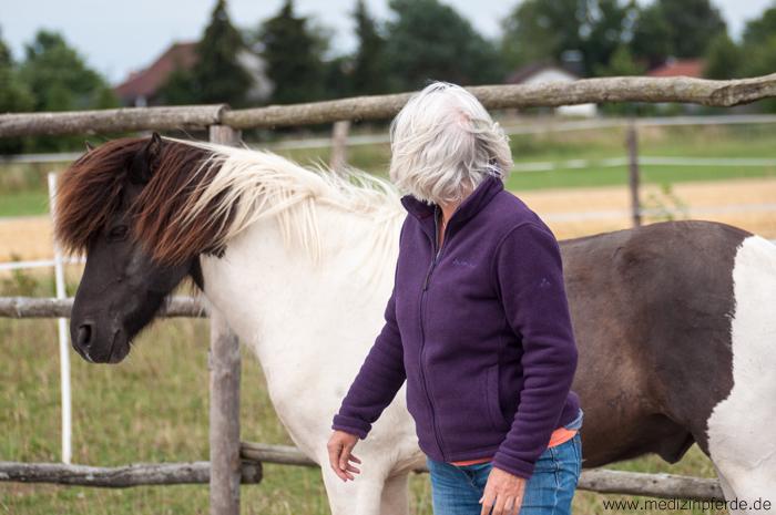 Coaching mit Pferden, Laedership, führung, führungskräftetraining, pferdegestütztes Coaching, Vertrauen aufbauen, Pferde spiegeln, Seminare mit Pferden, pferdegestützte Ausbildung Heldenreise Beziehungen