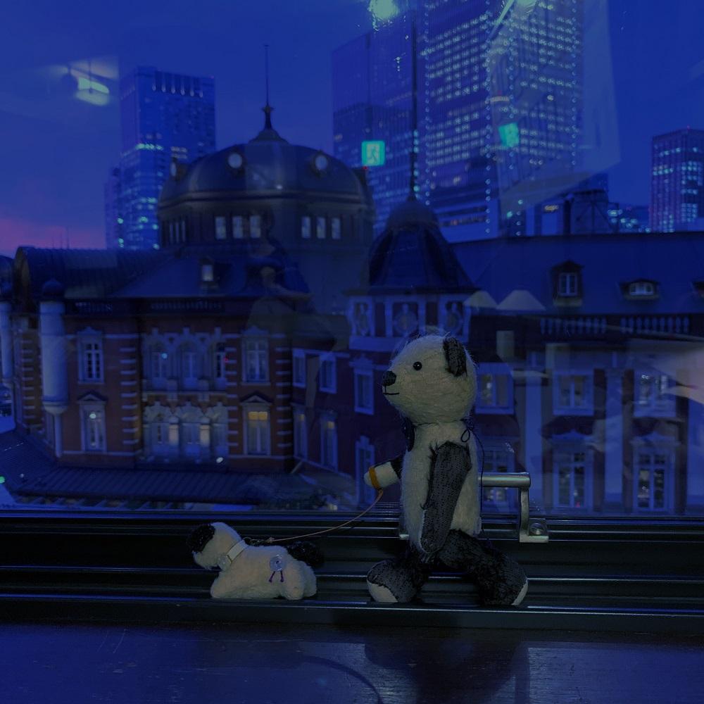 東京駅が見える窓でおさんぽ