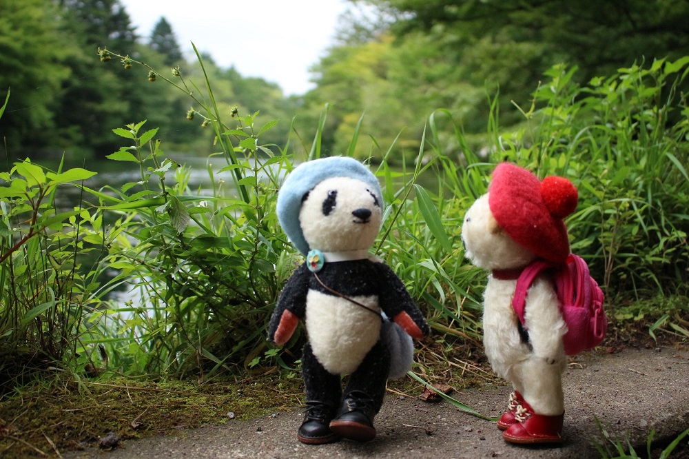 雲場池を散策中のおふたりさん