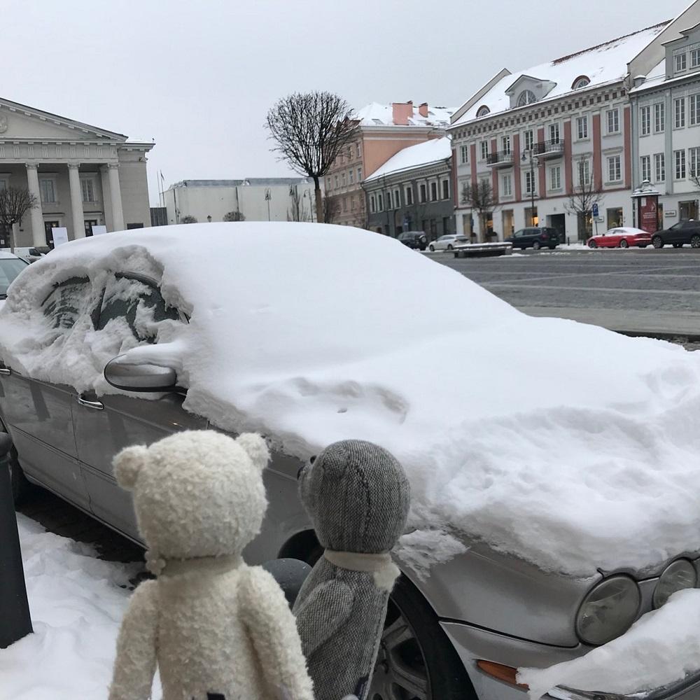 雪まみれ~