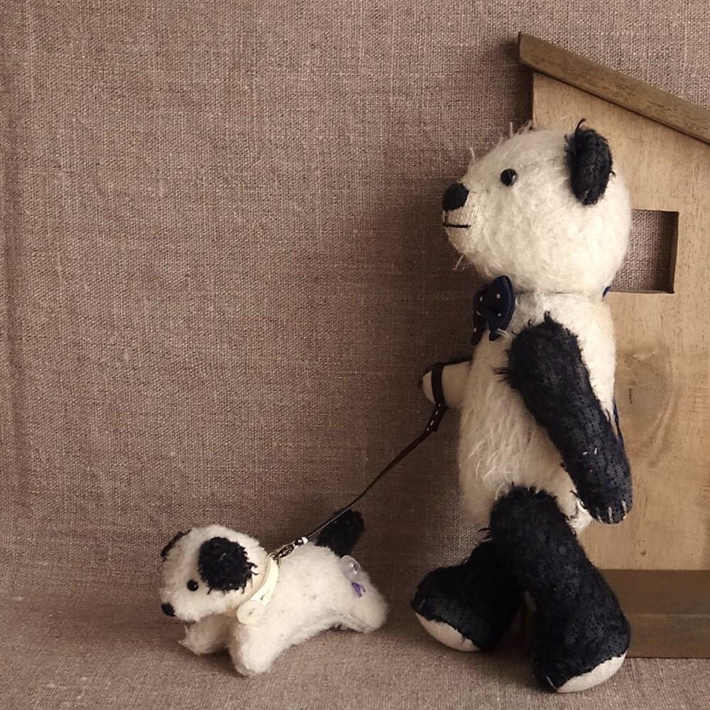 pan-chiはペットのびーちゃんをおさんぽさせてます。