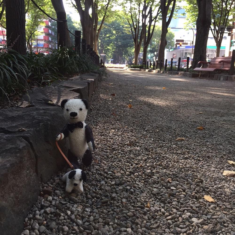 定禅寺通りのケヤキ並木をおさんぽ