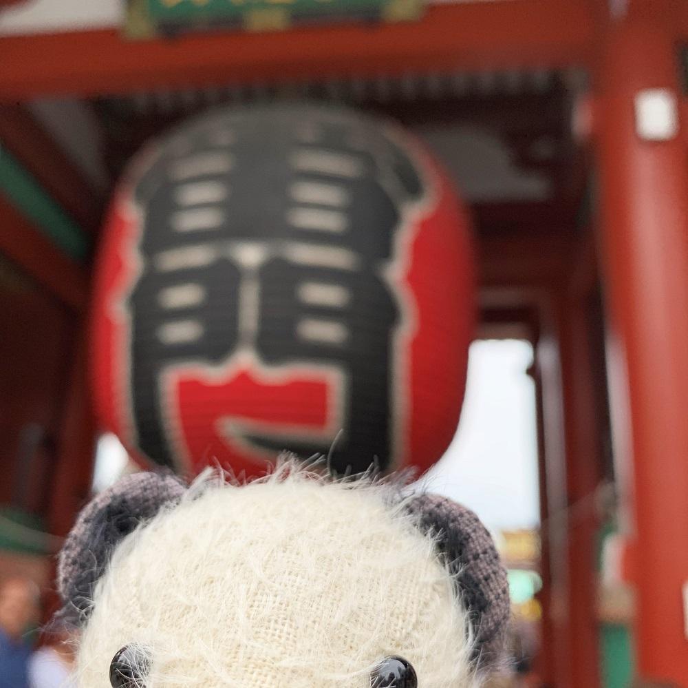 浅草寺の雷門だよー