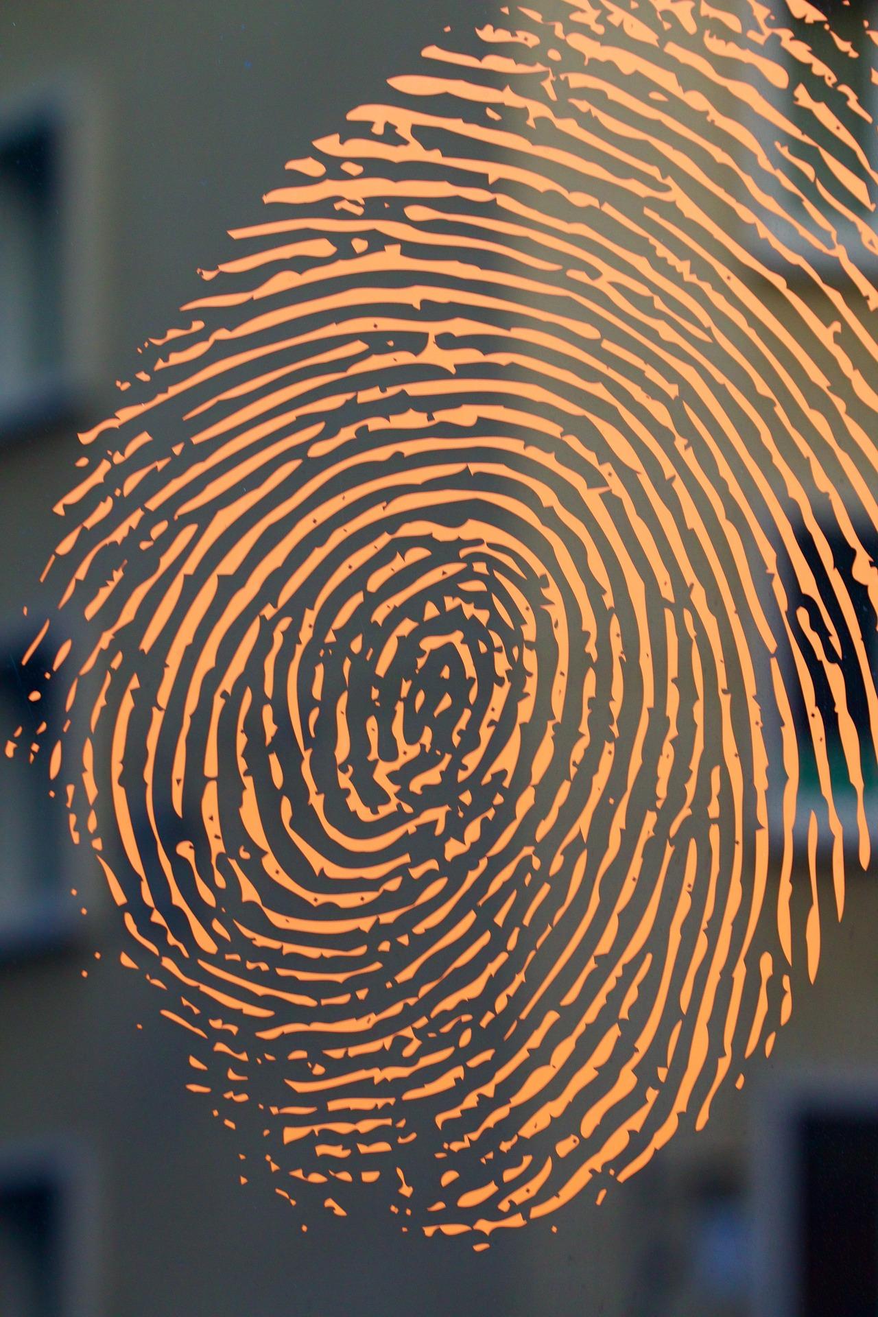 Psicología forense dins l'àmbit penal