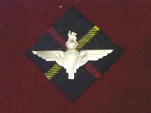Hunting Stewart tartan with the parachute badge.