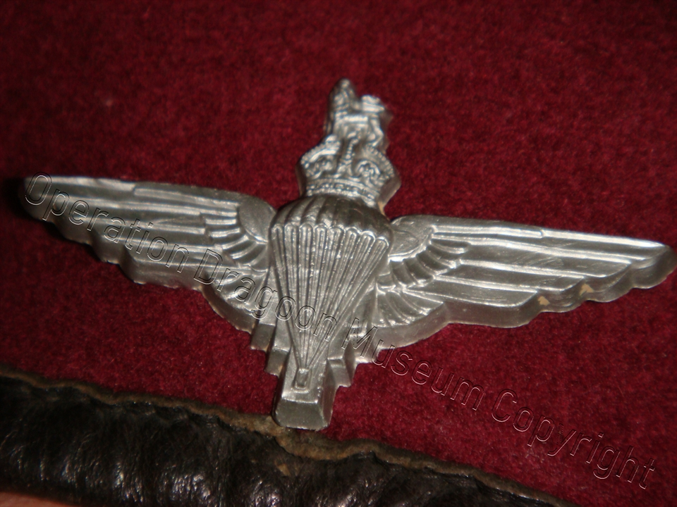 The parachute badge is an economy issue, made with bakelite.