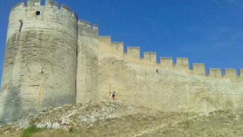 Olivier ... au pied du mur !