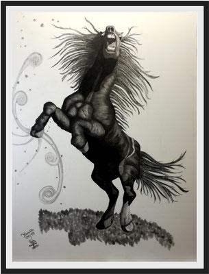 Wilde Stute/110x82 cm Graphit auf Papierkarton Preis 599 €