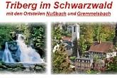 Wasserfall Triberg im Schwarzwald