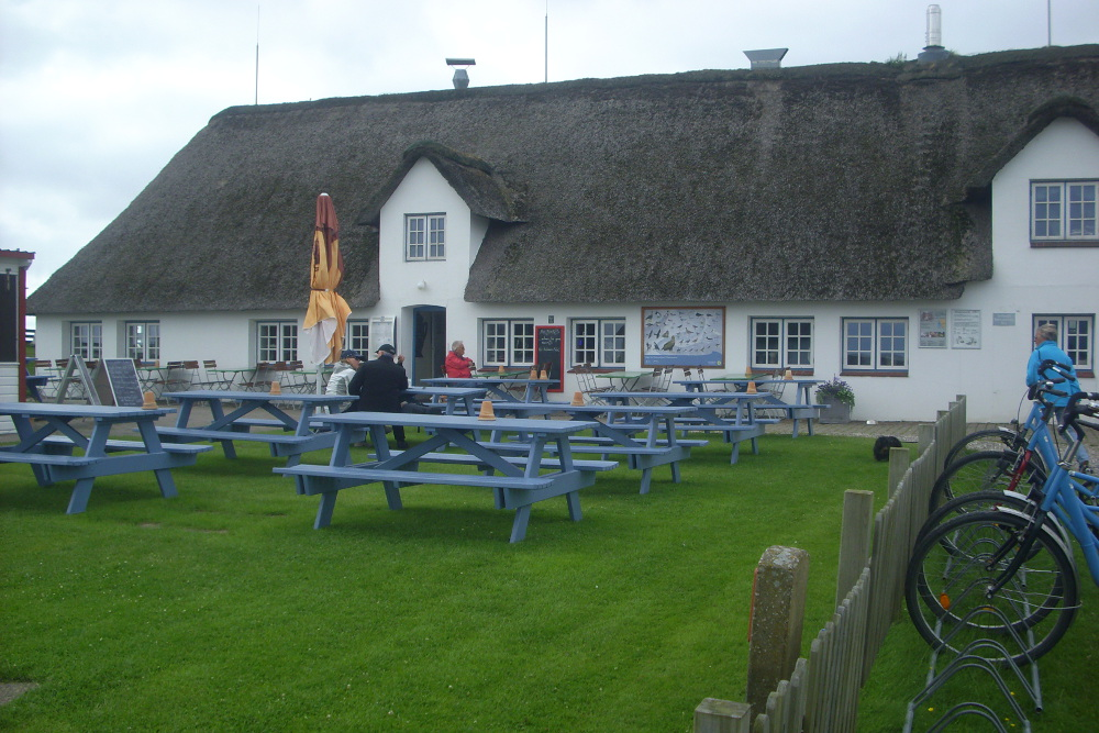 Hamburger Hallig 2016