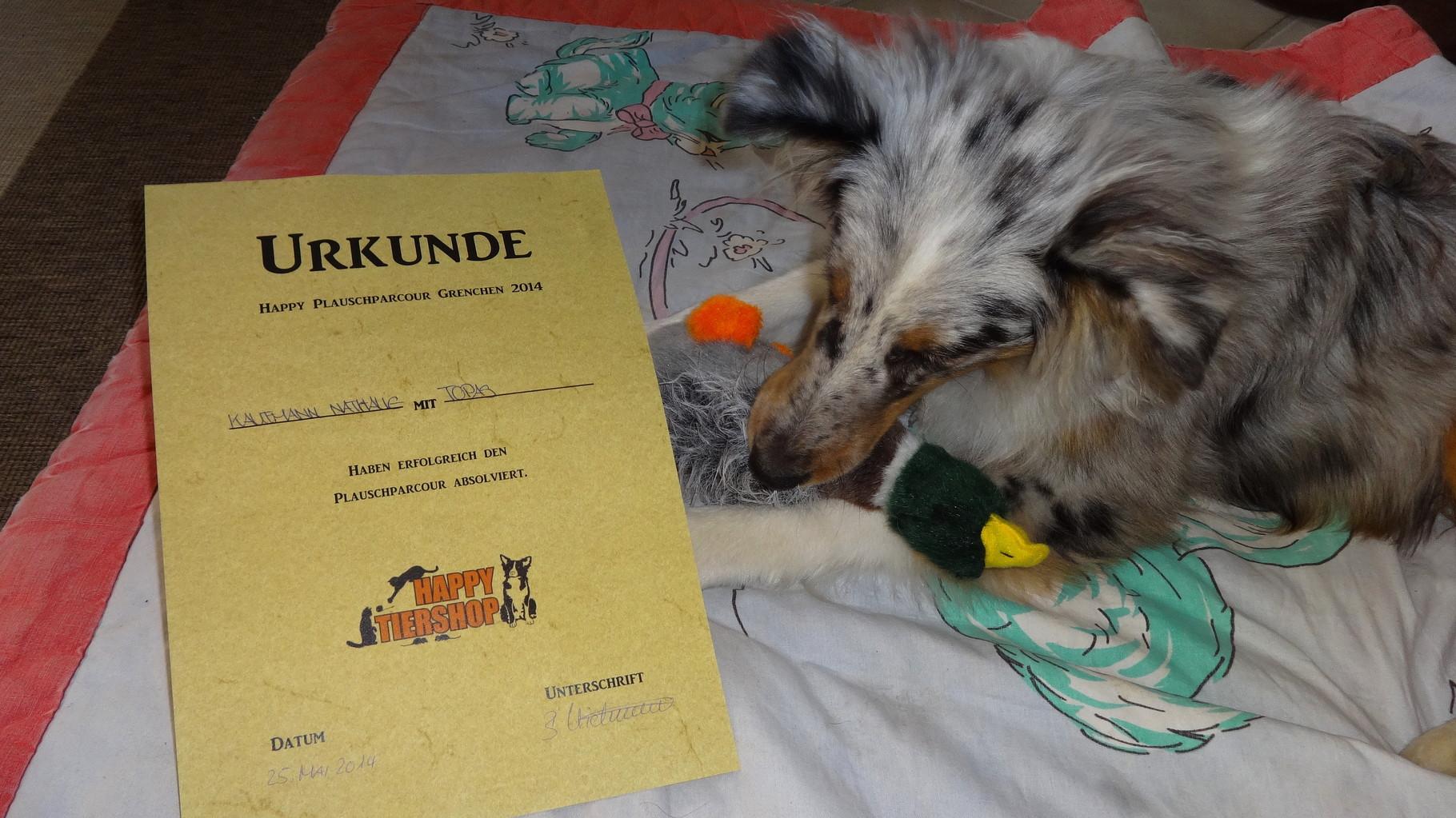 Erster Plauschparcours für Topas, Ente gewonnen!