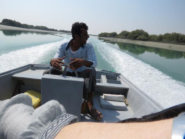 QUESHM - Bootsfahrt Mangroven