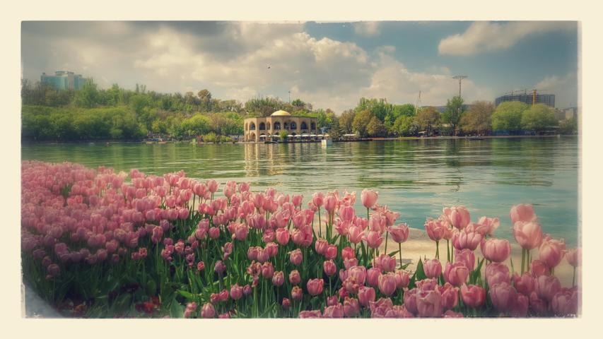 TABRIZ - See im El-Goli Park