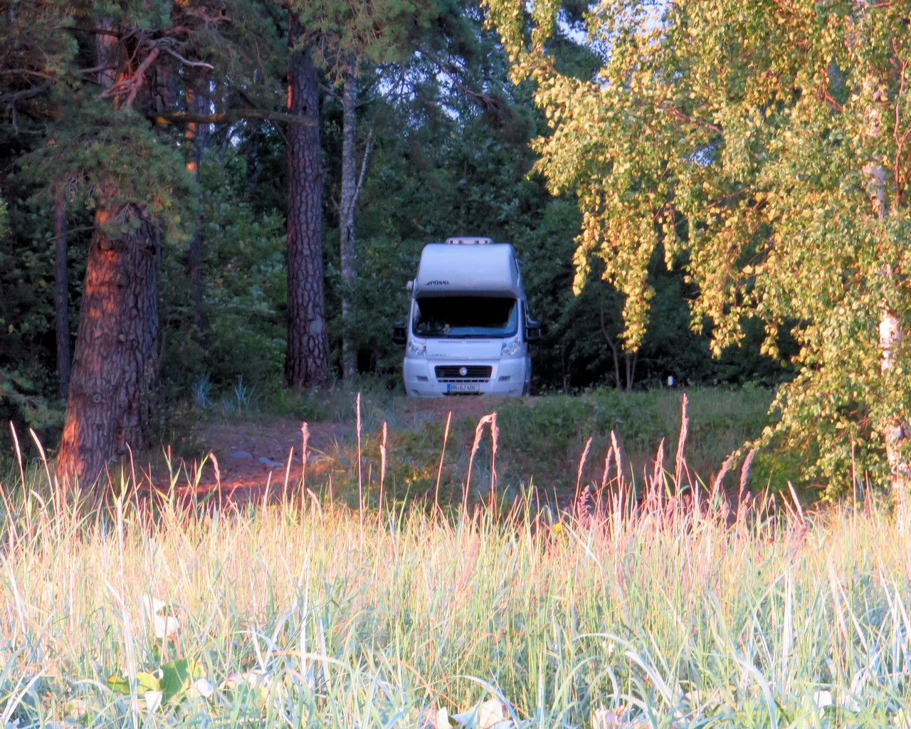nun in Matsi im Wald unser Platz für die Nacht!